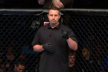 Hinds prepares to referee a bout in the UFC's Octagon (Combat Consulting)