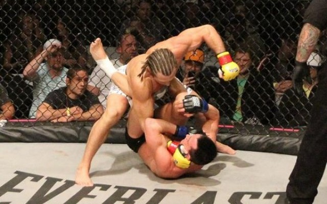 Palmer (top) delivers ground and pound (Lester Muranaka/Sherdog)