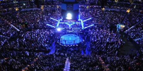 The Octagon (Phil Lambert/The MMA Corner)