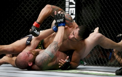 Fabricio Werdum (top) (Esther Lin/MMA Fighting)
